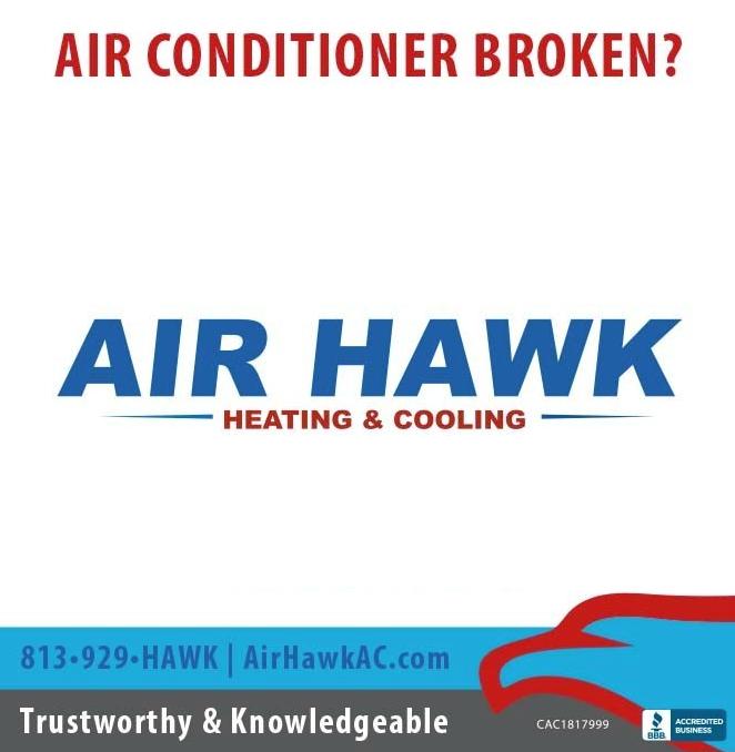 home hawk image